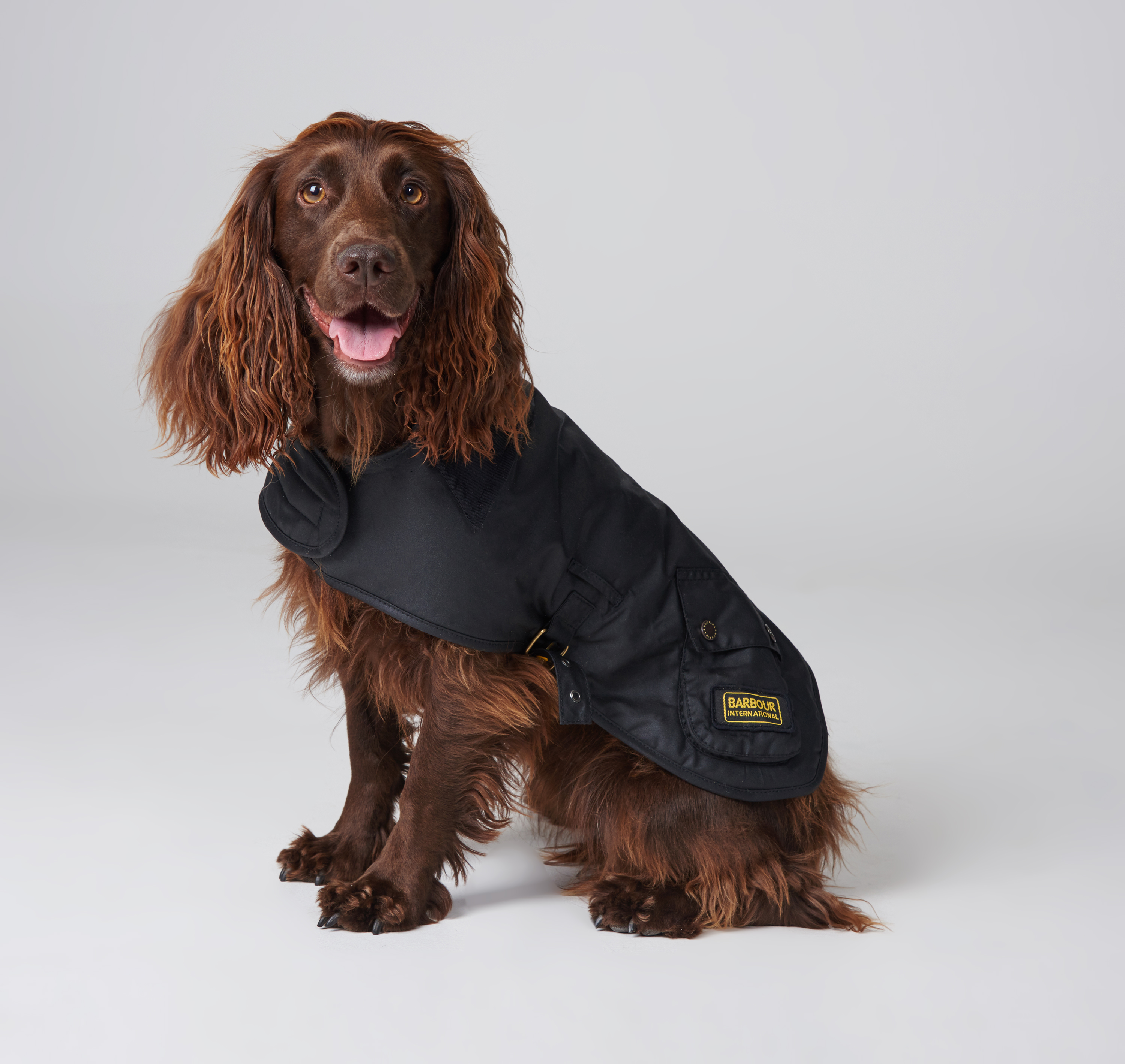 Barbour Barbour Dog Coat Black 389a017437d95